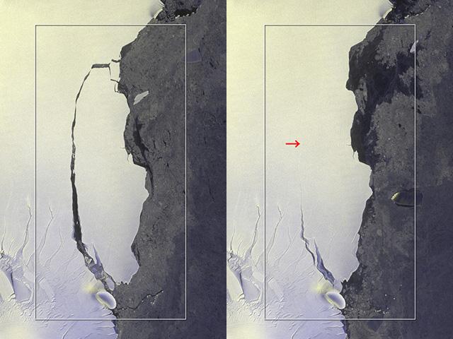 「だいち2号」が捉えた、南極半島Larsen-C棚氷で発生した大規模な氷山分離